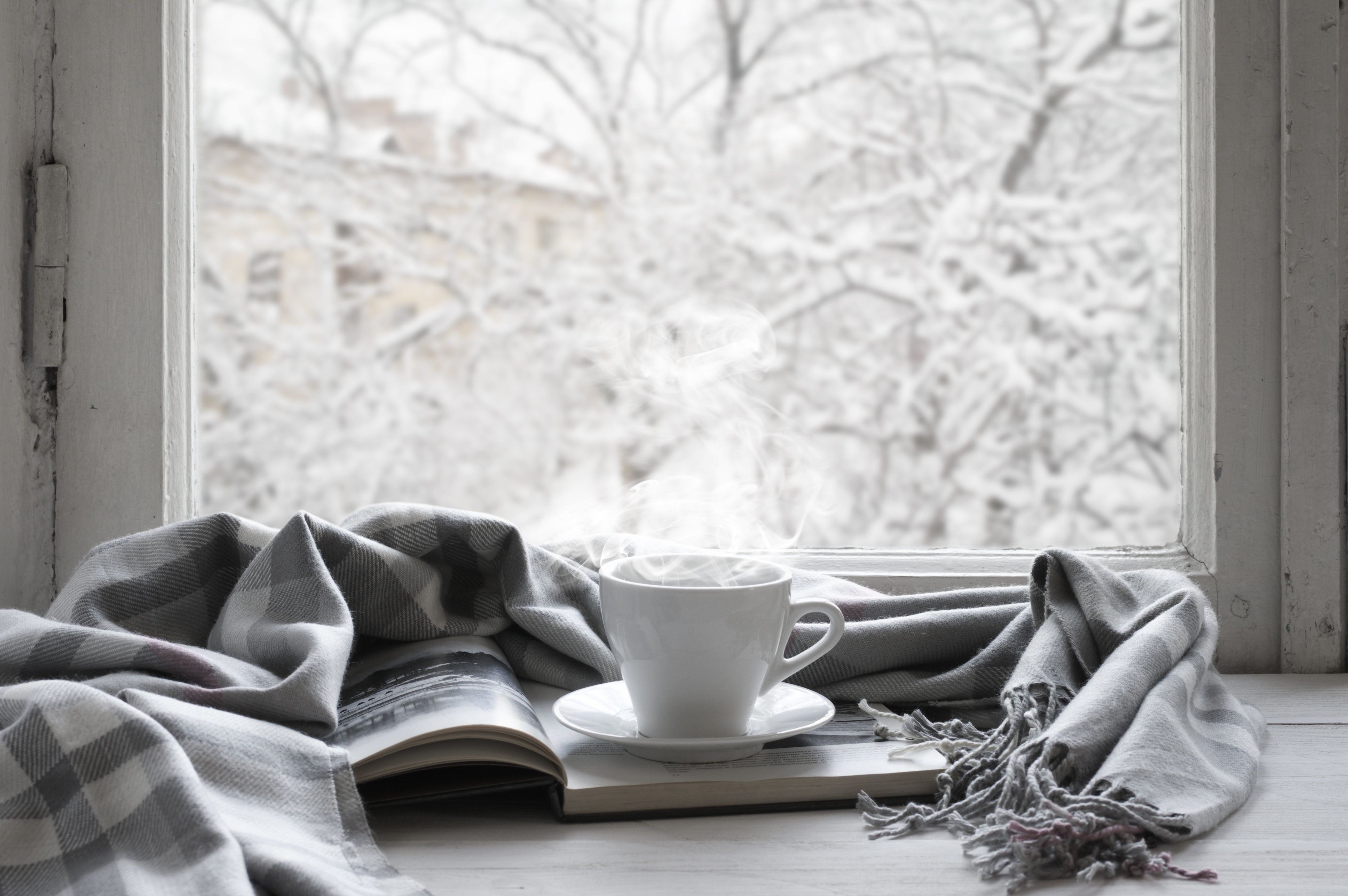 Cozy winter still life: cup of hot coffee and opened book with warm plaid on vintage windowsill against snow landscape from outside.