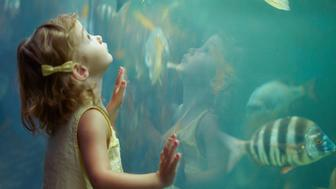 Shot of a little girl staring in awe at the fish in the aquariumhttp://195.154.178.81/DATA/i_collage/pi/shoots/783341.jpg