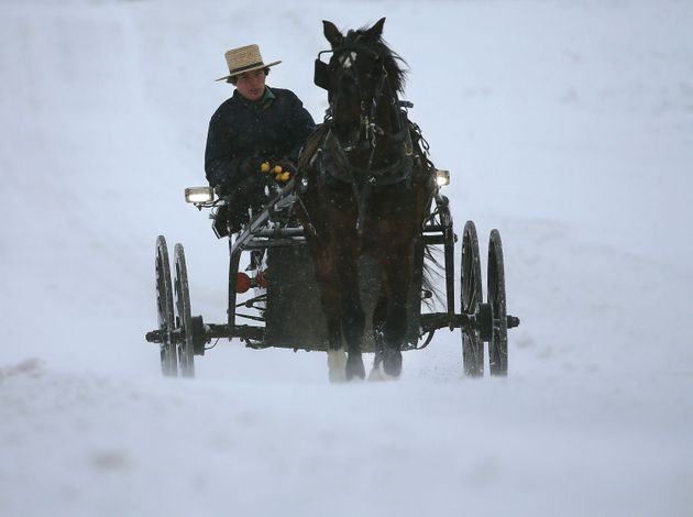 An Amish man drives his buggy through heavy snow and wind Jan. 23, 2016 in Mechanicsville,