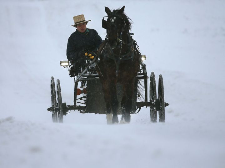 An Amish man drives his buggy through heavy snow and wind Jan. 23, 2016 in Mechanicsville, Maryland.