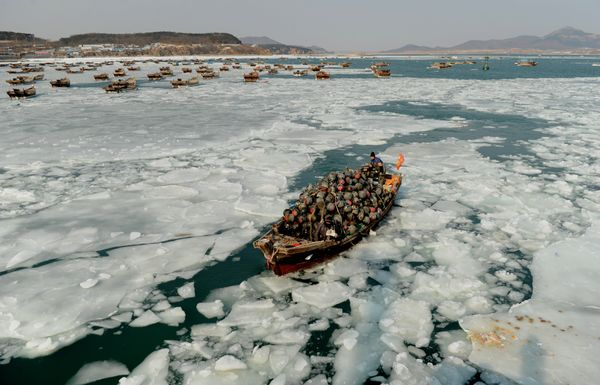 A fishing boat carrying buoys makes its way through the ice-filled harbor in Dalian on Jan. 21.