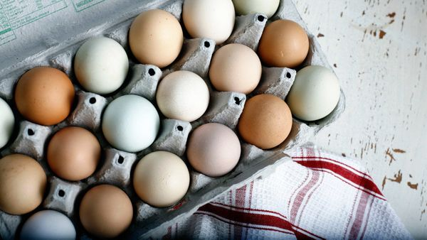 "<strong>We're talking about:</strong> Eggs <br><strong>Why you should eat more of them:</strong> The ""bioavailability of the"