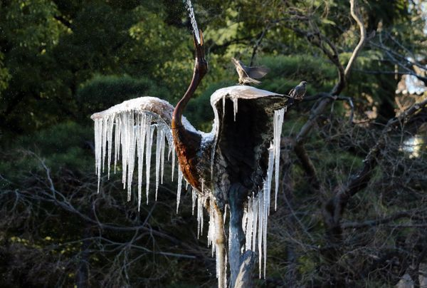 Icicles hang off a sculpture in Tokyo on Jan. 25.