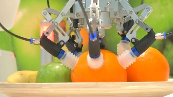 The gripper is specially designed so as not to bruise the fruit.