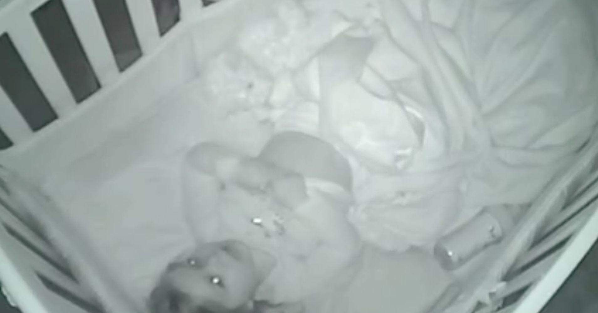 baby monitor records toddler s adorable bedtime prayer huffpost. Black Bedroom Furniture Sets. Home Design Ideas