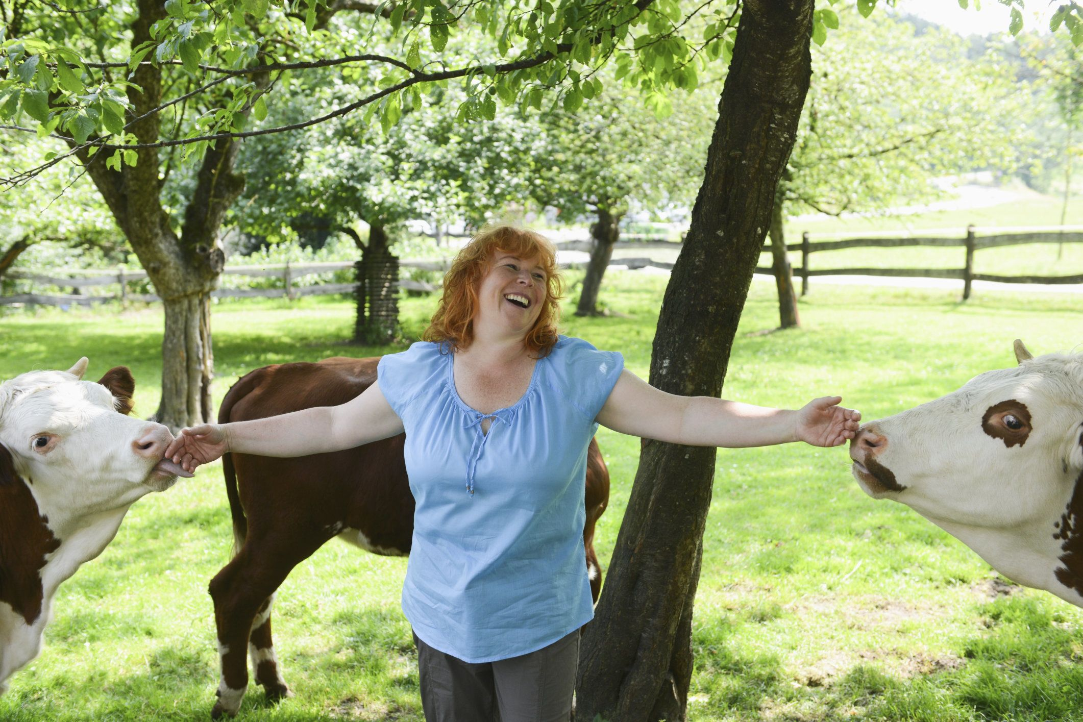 Mature woman with cattle on farm, smiling