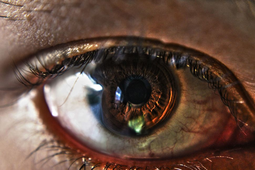"<a href=""https://www.eyeem.com/p/79616062"" target=""_blank"">AshlenBrookePhoto/EyeEm</a>"