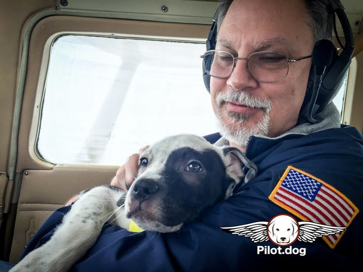 Mike cuddles one of the puppies during the two-hour flight.