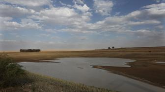 This Thursday Jan. 7, 2016 photo, shows the almost dried-up local dam in Senekal, South Africa where taps and water sources have run dry. Senekal, a small town in South Africas rural Free State province, is one of four regions declared disaster areas as a drought dries up South Africas heartland _ along with much of eastern and southern Africa _ bringing with it failed crops and acute water shortages. (AP Photo/Denis Farrell)