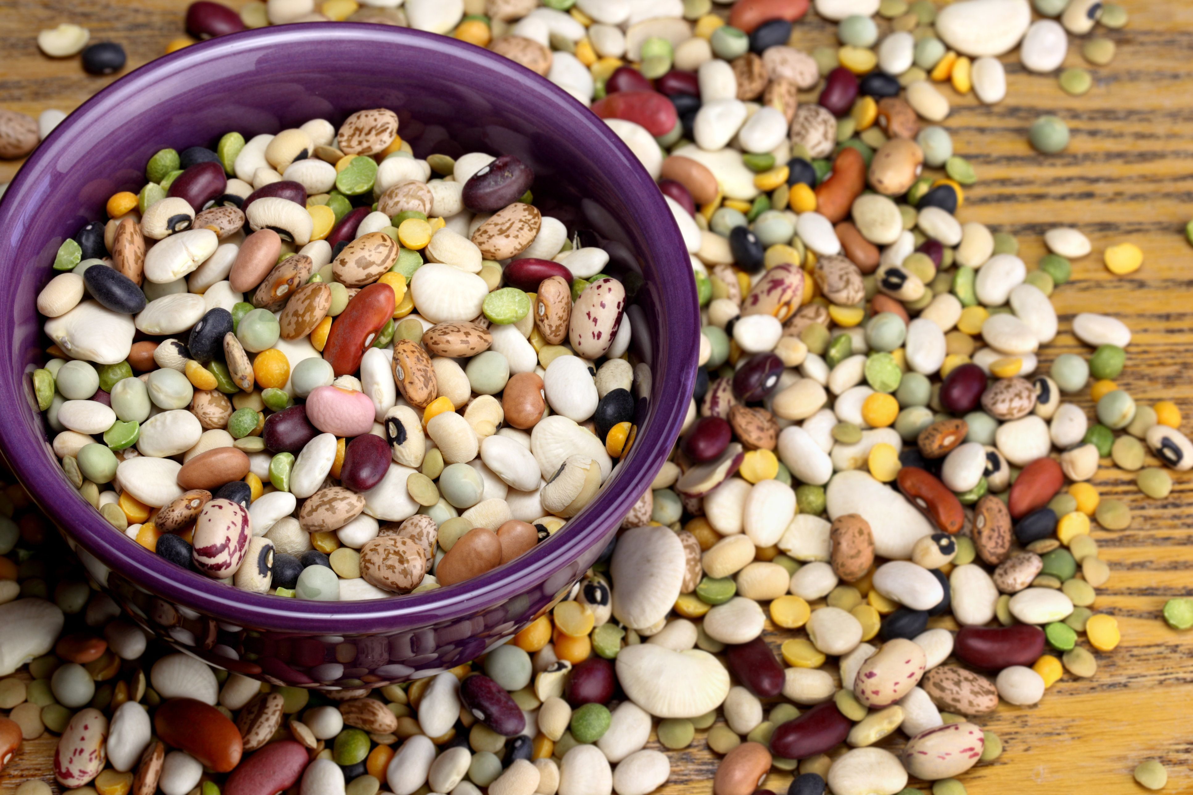 Colorful mixture of high fiber beans in purple bowl