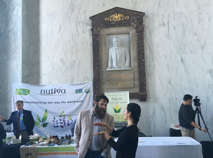 Hemp supporters meet on Capitol Hill as a marbled version of former Speaker Sam Rayburn looks on.