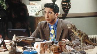 FRIENDS -- 'The One with All the Jealousy' Episode 12 -- Pictured: David Schwimmer as Ross Geller  (Photo by J. Delvalle/NBC/NBCU Photo Bank via Getty Images)