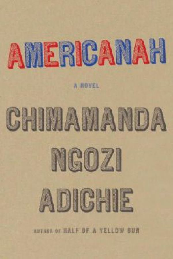 <i>Americanah</i>would be a delightful read if nothing more,but it's also a thoughtful parsing of cultural differ