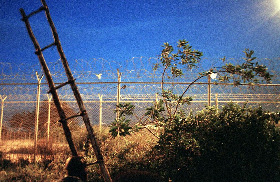 A ladder leans against the fence that separates Melilla and Morocco.