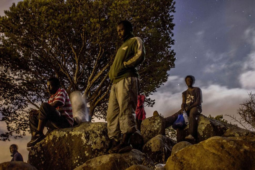 Men from Cameroon hide out in the mountains near Melilla.