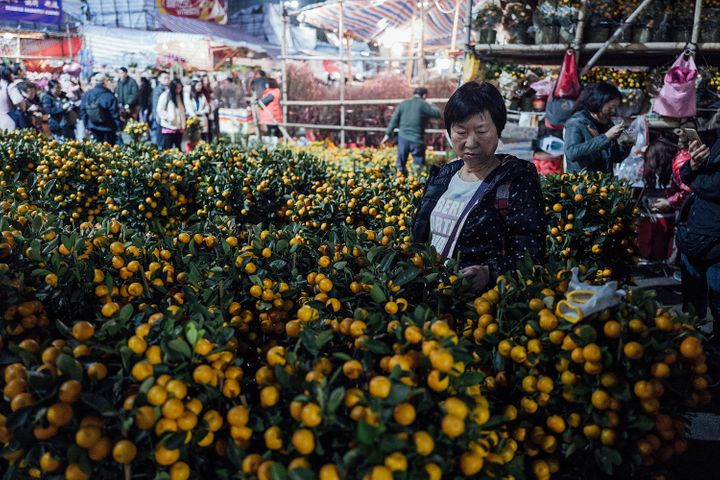 People visit a Chinese New Year Fair to get tangerines for luck in the upcoming year on February 4, 2016 inf Hong Kong.