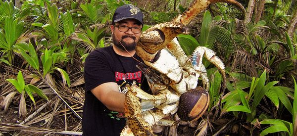 Holy Crab! Fearless Australian Poses With Massive Coconut Crab