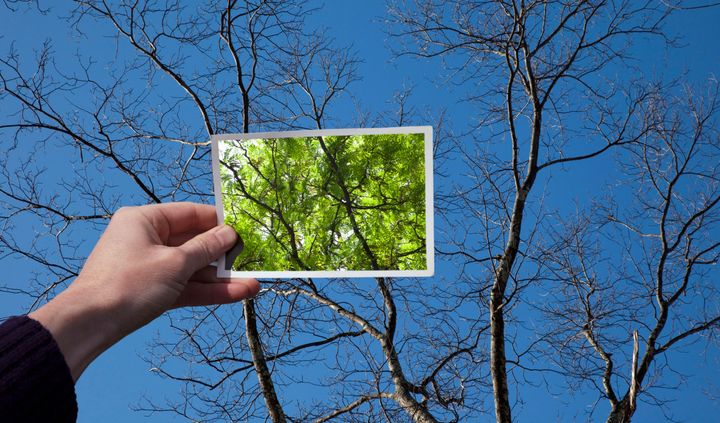 A new study finds brain activity varies with the seasons.