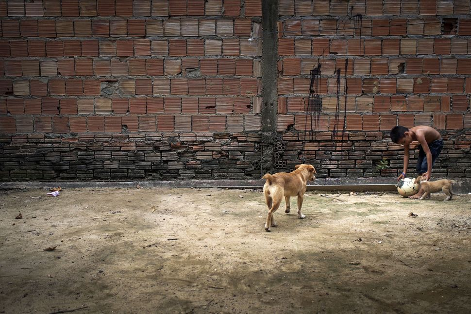 A young boy plays with a dog in a village in Brazil on October 20th, 2014. The village comprises 25 families and ha