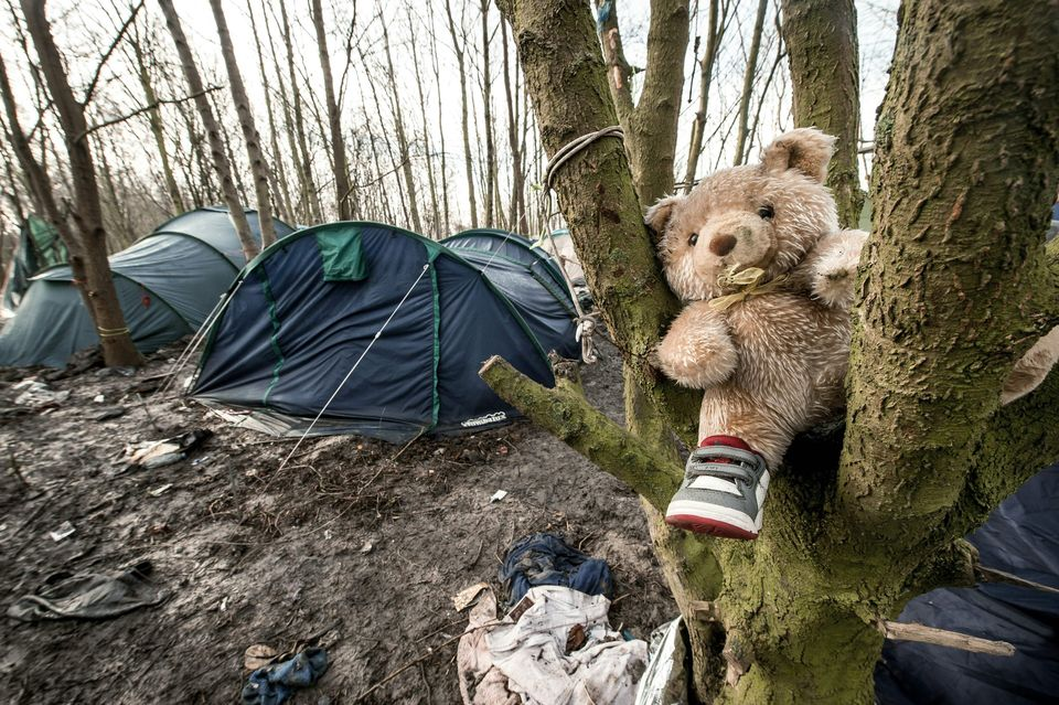 A teddy bear sits in a tree next to the camp's tents. About 200 children live in the camp, according to MSF.