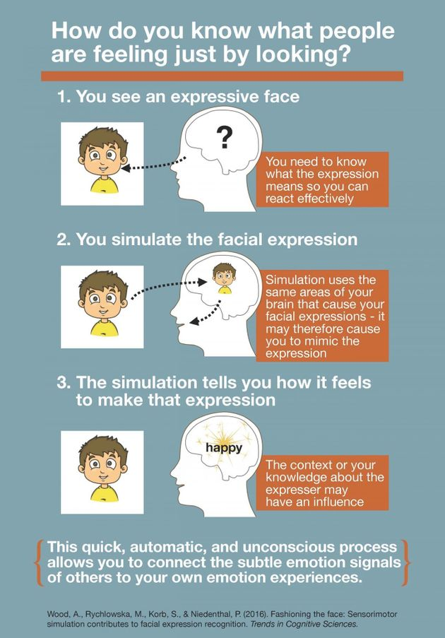 This infographic explains the research behind how you know what people are feeling just by looking at...