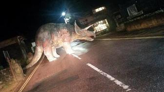 A triceratops named Godshilla was found blocking a road on the Isle of Wight.
