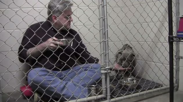Veterinarian climbs into crate to comfort abandoned dog