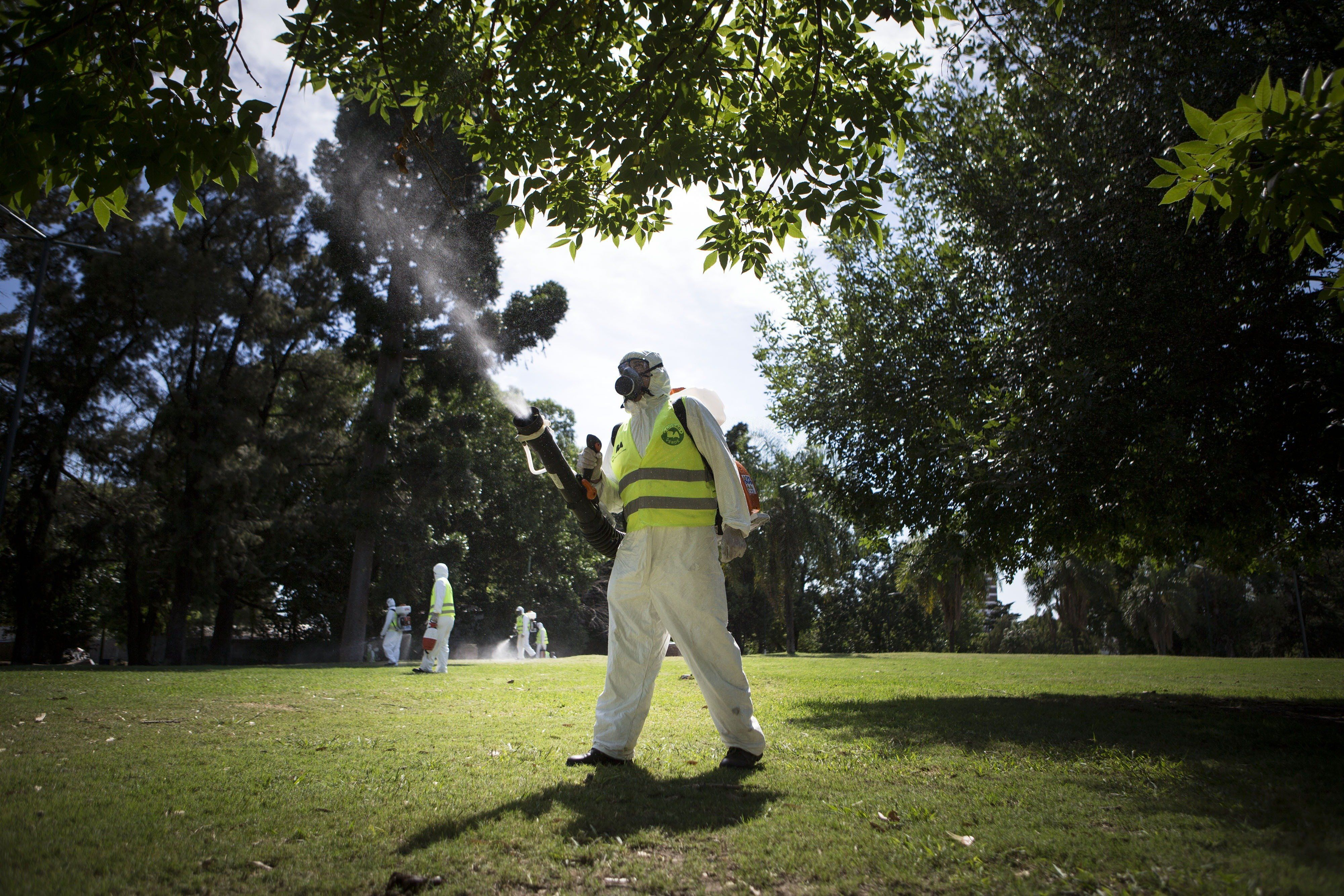 Argentina's Environment and Public Space Ministry fumigation brigade members spay insecticide in an area of Saavedra Park, in an effort to control the Aedes aegypti mosquito, in Buenos Aires on Feb. 11, 2016.