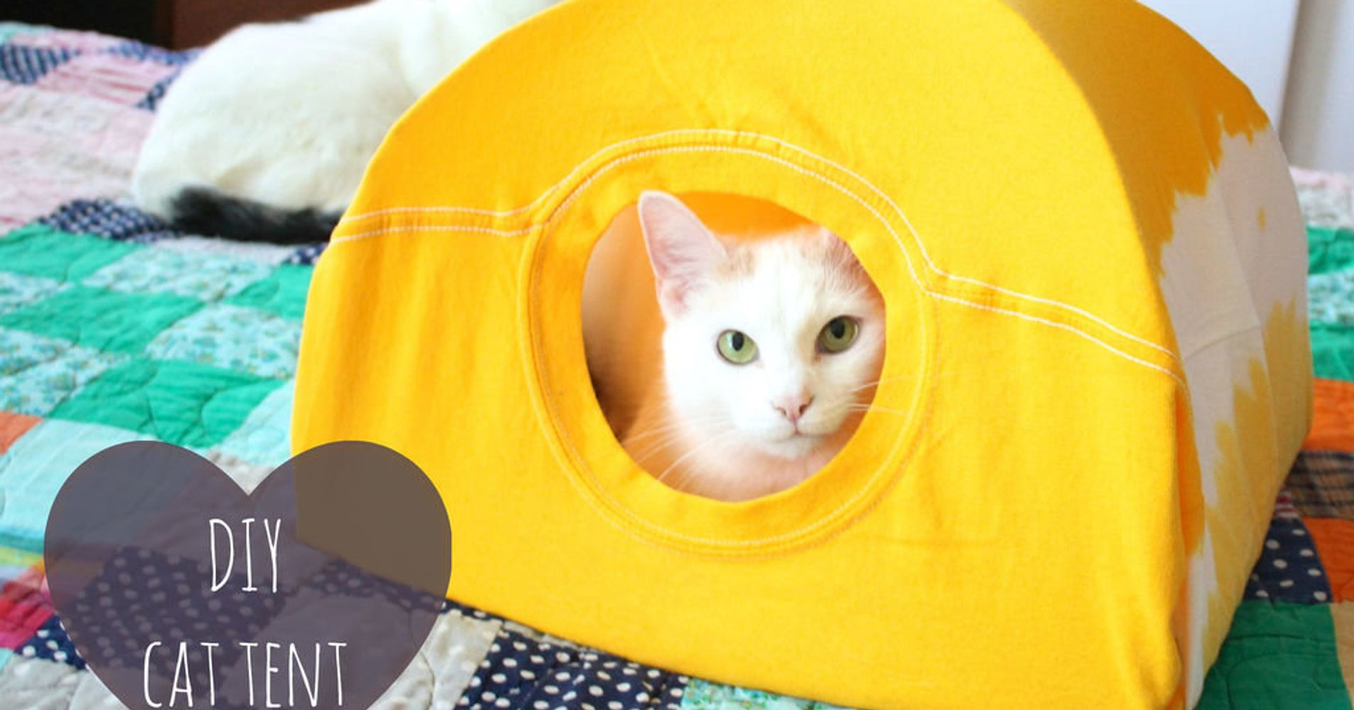 3 Steps To Make A Cat Tent From An Old T-Shirt | HuffPost Life