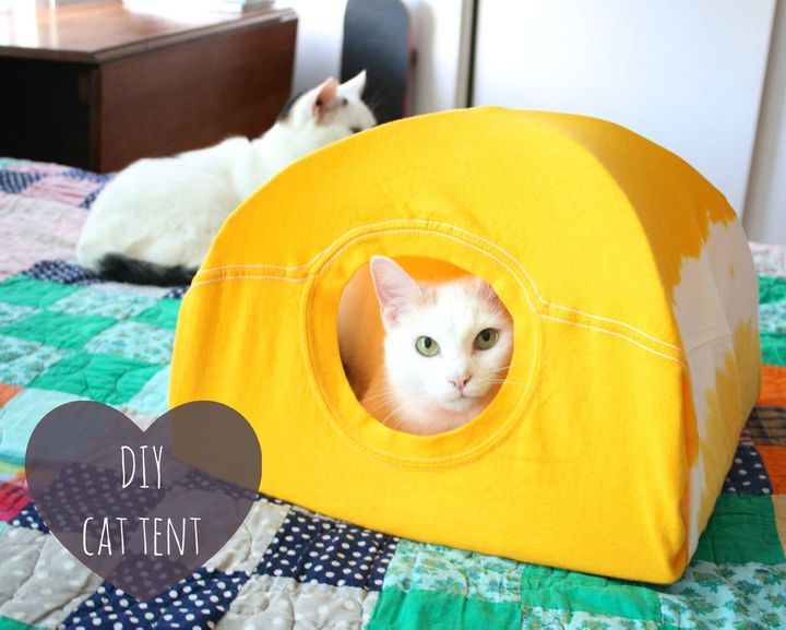 3 Steps To Make A Cat Tent From An Old T Shirt