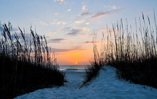 This area of Florida's west coast is known for its near-constant sunshine. Take advantage of the extra vitamin D by tryi