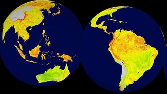 Global map of the Vegetation Sensitivity Index (VSI), a new indicator of vegetation sensitivity to climate variability using satellite data. Red colour shows higher ecosystem sensitivity, whereas green indicates lower ecosystem sensitivity. Grey areas are barren land or ice covered. Inland water bodies are mapped in blue.