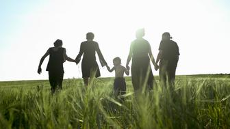 Three generation family walking down in field, rear view