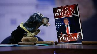 NEW YORK, NY - FEBRUARY 03:  Triumph, the Insult Comic Dog attends Hulu Presents 'Triumph's Election Special' produced by Funny Or Die at NEP Studios on February 3, 2016 in New York City.  (Photo by John Lamparski/Getty Images for Hulu)