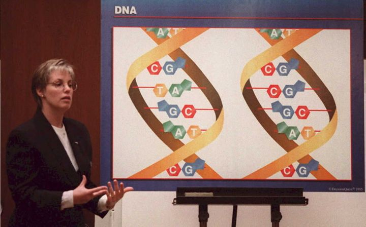 A lab analyst explains differences between two strands of DNA, which was used in the case against Simpson.