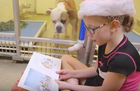 The Shelter Buddies Reading Program benefits both the animals and the kids.