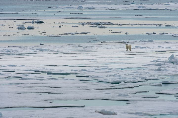 The European Union plays an important rolein the Arctic, though many misconceptions about its influence still exist.