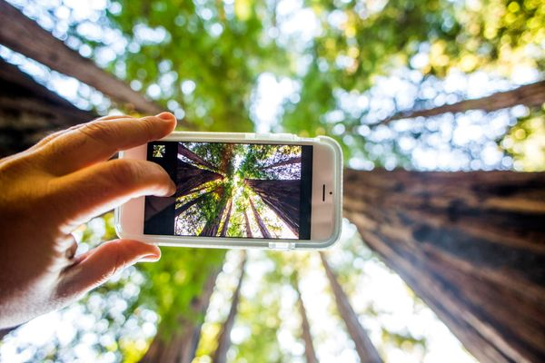 """Whether you take pictures and videos with a DSLR camera or a cell phone, or even capture action on the go with a device like"