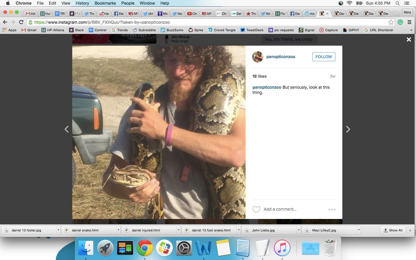 Daniel Moniz is seen holding one of his catches during the Python Challenge in the Florida Everglades.