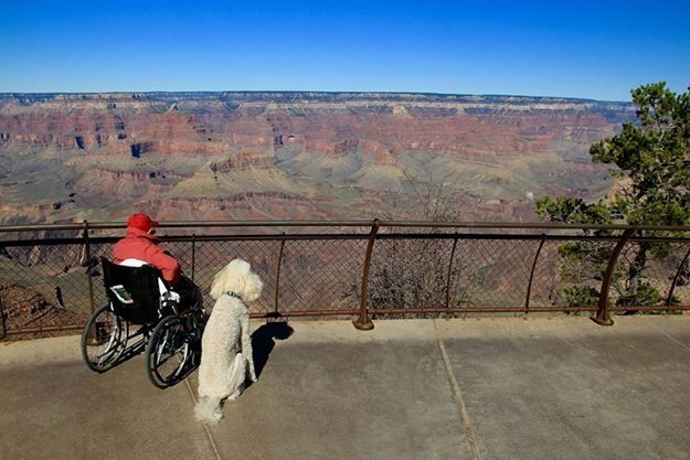 Norma at the Grand Canyon with Ringo.