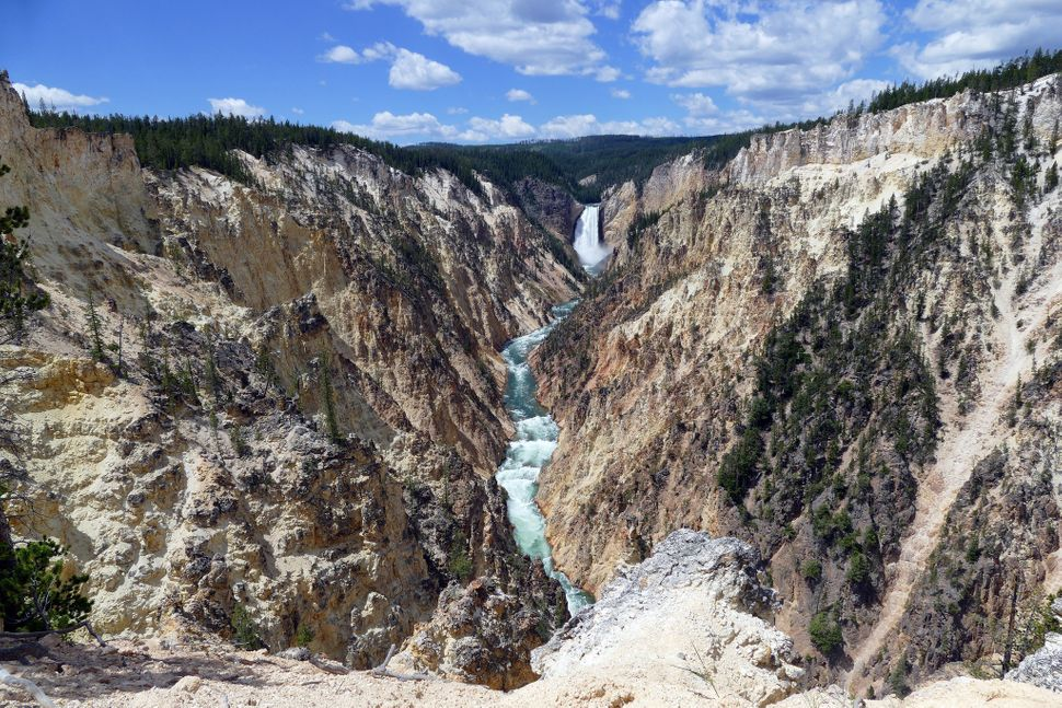 A view of Lower Falls and Grand Canyon of the Yellowstone from Artist Point.