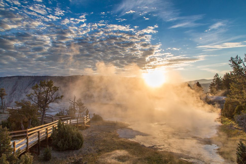Sunrise at Mammoth Hot Springs.
