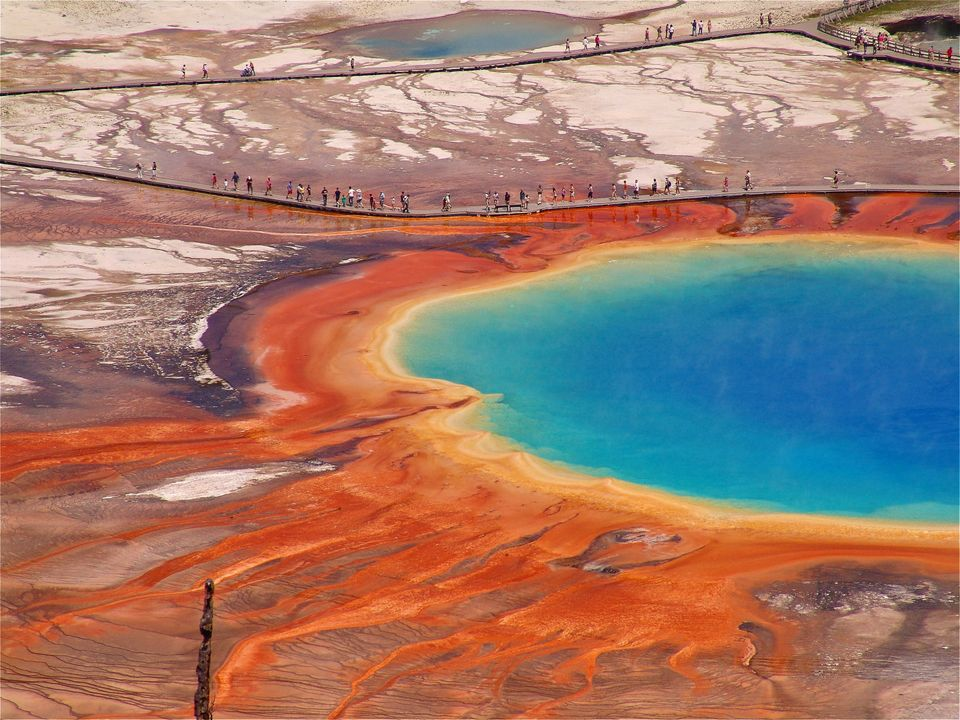 Grand Prismatic Spring at Midway Geyser Basin paints an incredible picture in vibrant blues, yellows and oranges.
