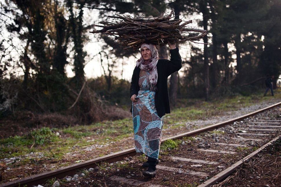 An elderly woman carries wood on her head tothe makeshift camp in Idomeni.