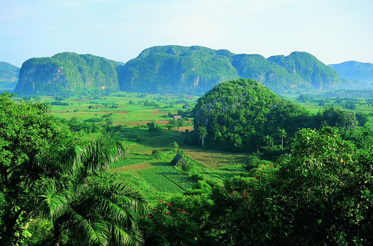 """The dome-shaped hills inValle de Viñales are known as <a href=""""http://whc.unesco.org/en/list/840"""" target=""""_blank"""">mogotes</a>."""