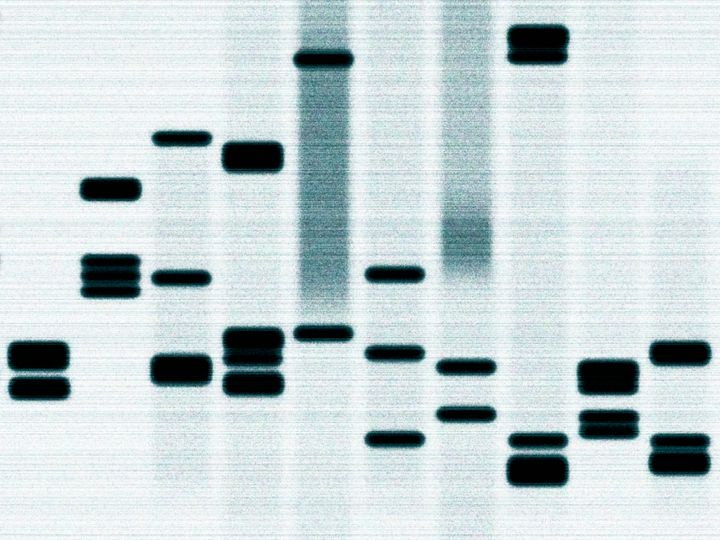 """Preserving DNA gives families an opportunity to capture all this information and establish a connection that will last"