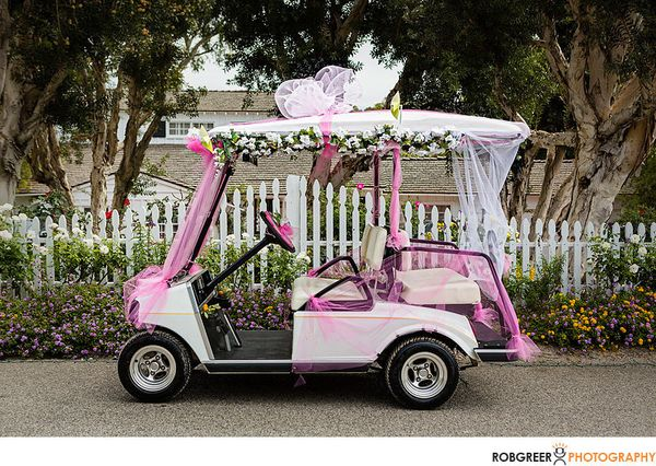 golf cart decorating ideas elitflat - Golf Cart Christmas Decorations