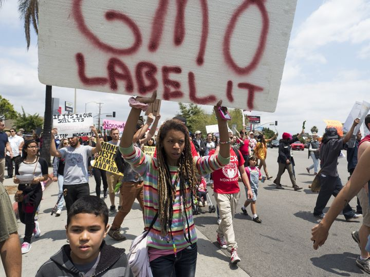 Activists protest against GMOs in a May 2015 march in Los Angeles.