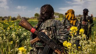 7 April 2015: Three fighters from the YPJ (Women's Protection Units), walks through the flower fields in Western frontline near the city of Kobane. The city of Kobane is liberated though the fight in the frontlines around it is still goes on.