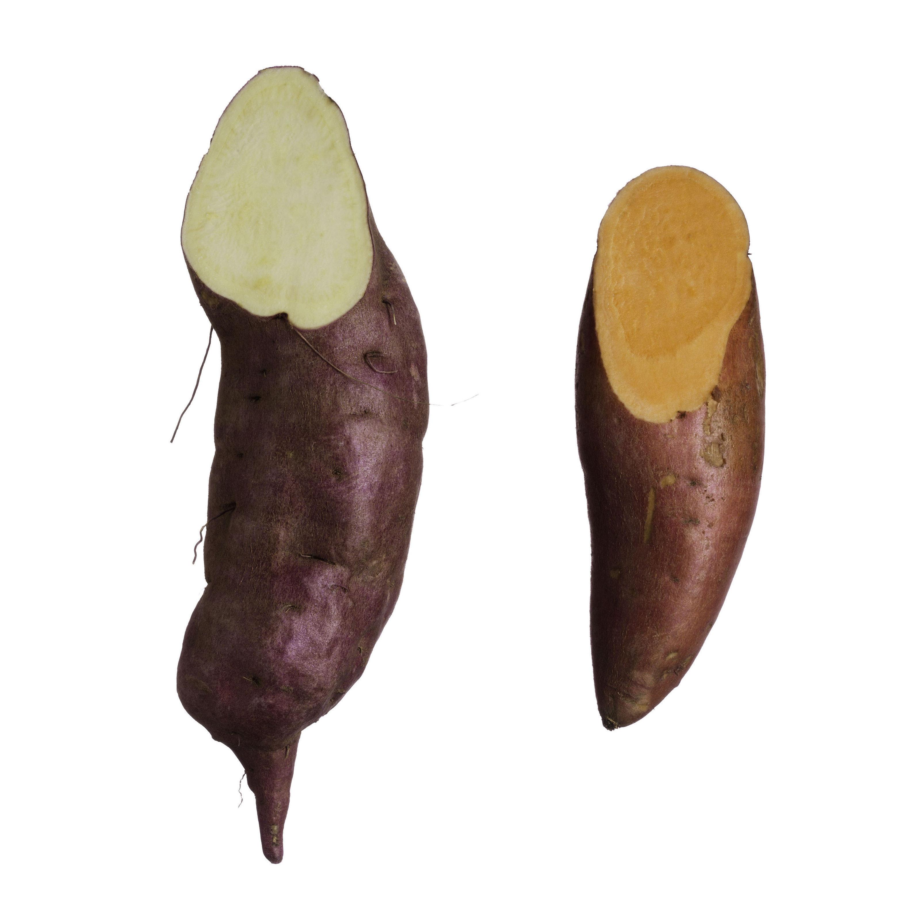 AmericBeauregard and Purple Japanese Sweet Potatoe